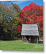 Autum For A Mountain Home Metal Print by Skip Willits