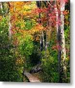 Autumn Boardwalk Metal Print by Bill Wakeley