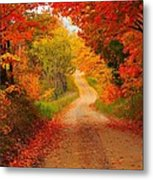 Autumn Cameo Metal Print by Terri Gostola