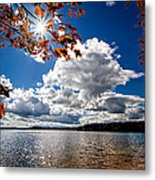 Autumn  Confidential  Metal Print by Bob Orsillo