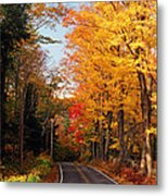 Autumn Country Road Metal Print by Joann Vitali