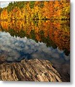 Autumn Day Metal Print by Karol Livote
