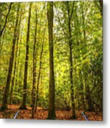 Autumn Fall Forest Landscape Magic Book Pages Metal Print by Matthew Gibson
