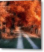 Autumn Lane Metal Print by Tom Mc Nemar