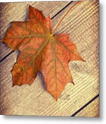 Autumn Leaf Metal Print by Amanda And Christopher Elwell