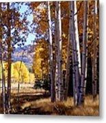 Autumn Paint Chama New Mexico Metal Print by Kurt Van Wagner