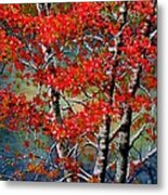 Autumn Reflections Metal Print by Janine Riley