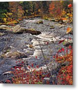 Autumn River Metal Print by Joann Vitali