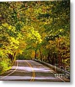 Autumn Road Metal Print by Carol Groenen