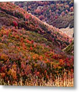 Autumn Metal Print by Rona Black