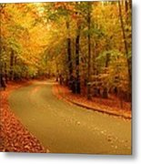Autumn Serenity - Holmdel Park  Metal Print by Angie Tirado