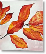 Autumn Metal Print by Shannan Peters
