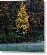 Autumn Splendor Metal Print by Shane Holsclaw