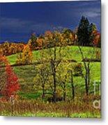 Autumn Storm Metal Print by Thomas R Fletcher