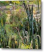 Autumn Swamp Metal Print by Bill Wakeley