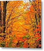 Autumn Tunnel Of Trees Metal Print by Terri Gostola