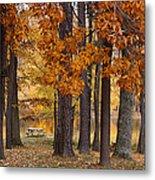 Autumn View Metal Print by Sandy Keeton