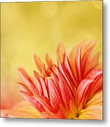 Autumns Calling Card Metal Print by Beve Brown-Clark Photography