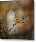 Autumns Solitude Metal Print by Mike Reid