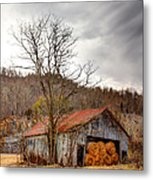 Awaiting Spring Metal Print by David  Jones
