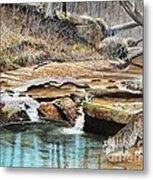 Away From Cover - Bobcat Metal Print by Phillip  Powell