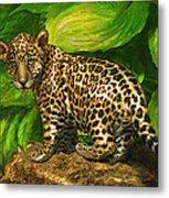 Baby Jaguar Metal Print by Jane Schnetlage