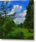 Back Yard View Metal Print by Jeff Kolker