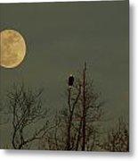 Bald Eagle Watching The Full Moon Metal Print by Raymond Salani III