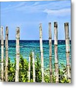 Bamboo Fence Metal Print by Keith Ducker