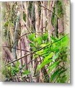 Bamboo Forest At Lamma Island Hong Kong Metal Print by Yury Malkov