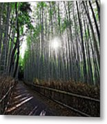 Bamboo Forest Path Of Kyoto Metal Print by Daniel Hagerman
