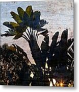 Banana Palms Metal Print by Gilbert Artiaga