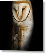 Barn Owl Metal Print by Bill Wakeley