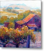 Barn Vineyard Metal Print by Carolyn Jarvis