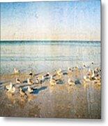 Beach Combers - Seagull Art By Sharon Cummings Metal Print by Sharon Cummings
