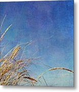 Beach Grass In The Wind Metal Print by Michelle Calkins