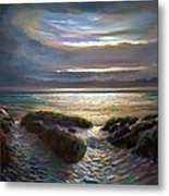 Beach Paths Metal Print by Robert Shaw