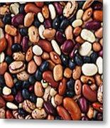 Beans Metal Print by Elena Elisseeva