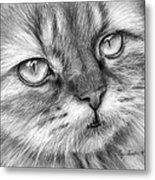 Beautiful Cat Metal Print by Olga Shvartsur