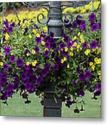 Beautiful Hanging Flowers Metal Print by Sabrina L Ryan