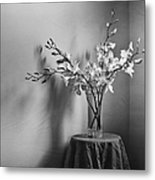 Beautiful Melancholy Metal Print by Amy Weiss