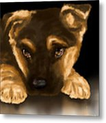 Beautiful Puppy Metal Print by Veronica Minozzi