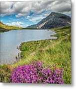 Beautiful Wales Metal Print by Adrian Evans