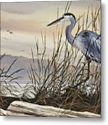 Beauty Along The Shore Metal Print by James Williamson