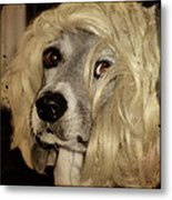 Beauty Metal Print by Gothicolors Donna