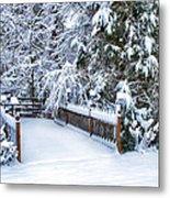 Beauty Of Winter Metal Print by Kathy Jennings