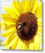 Bee Metal Print by Les Cunliffe