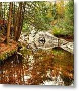Behind The Falls Metal Print by Dennis Clark