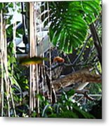 Bird - National Aquarium In Baltimore Md - 12121 Metal Print by DC Photographer