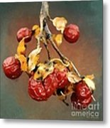Bittersweet Memories Metal Print by RC DeWinter